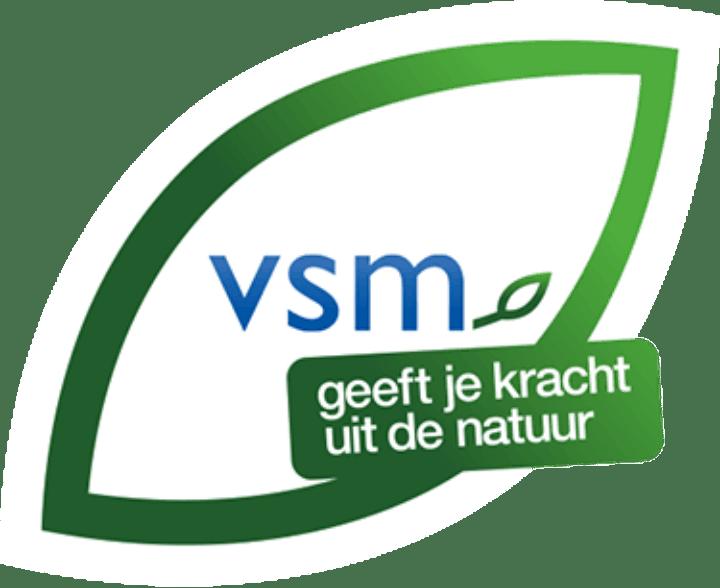 Vsm-Logo-Footer@2X